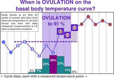 When is ovulation - basal temperature