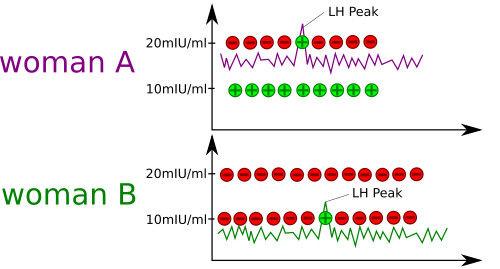 LH Test Positive 10 and 20 miu / l