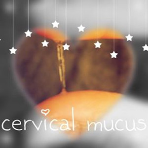 cervical mucus interpretation