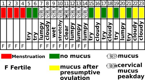 Billings ovulation method - cycle sheet